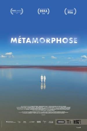 Metamorphosis poszter