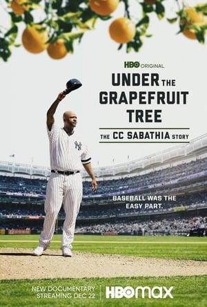 A grapefruit fa alatt: A CC Sabathia sztori előzetes
