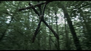 A blair-i boszorkány átka háttérkép