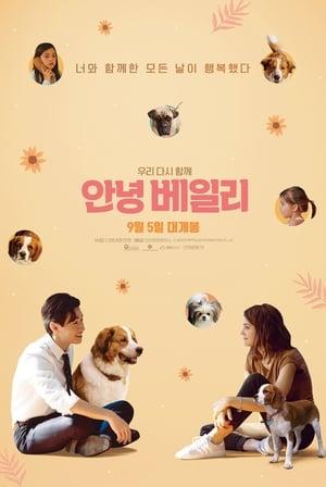 Egy kutya négy útja poszter