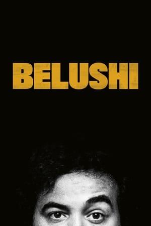 Belushi poszter