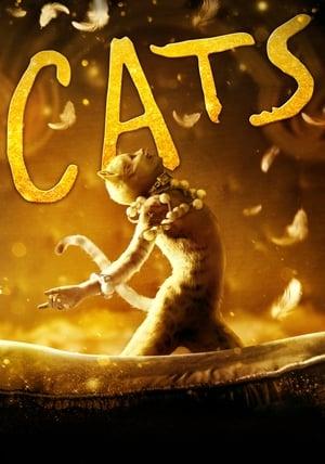 Macskák poszter