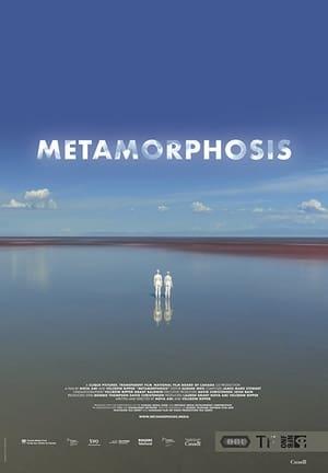 Metamorphosis előzetes