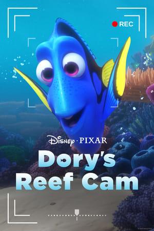 Dory's Reef Cam előzetes