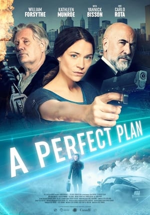 A Perfect Plan poszter