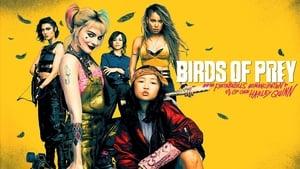 Ragadozó madarak (és egy bizonyos Harley Quinn csodasztikus felszabadulása) háttérkép