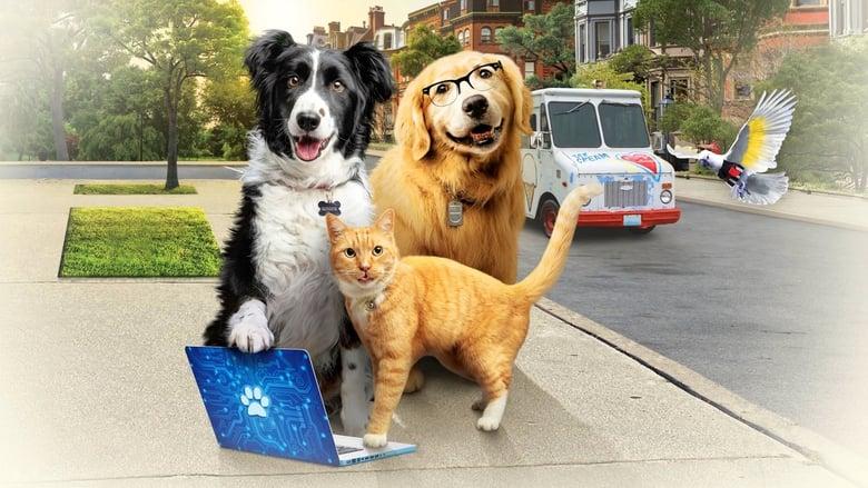 Cats & Dogs 3: Paws Unite előzetes