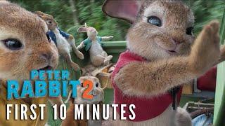 PETER RABBIT 2 – First 10 Minutes - előzetes eredeti nyelven