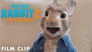 PETER RABBIT 2: THE RUNAWAY Clip – My Voice Isn't Annoying - előzetes eredeti nyelven