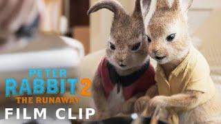 PETER RABBIT 2: THE RUNAWAY Clip - Sparkling or Still - előzetes eredeti nyelven