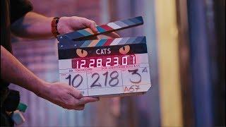 CATS - A Look Inside - előzetes eredeti nyelven