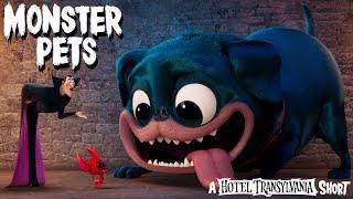 Hotel Transylvania - Házi szörnyek előzetes kép